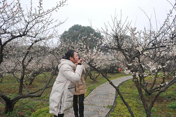 美丽女人节 相约三月天--苏州白马涧龙池风景区
