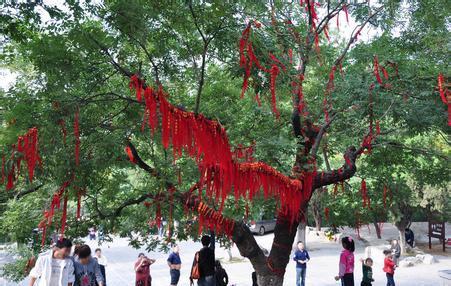 """""""梦回大唐""""--苏州白马涧龙池风景区"""